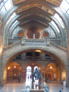 Natural History Museum entrance hall